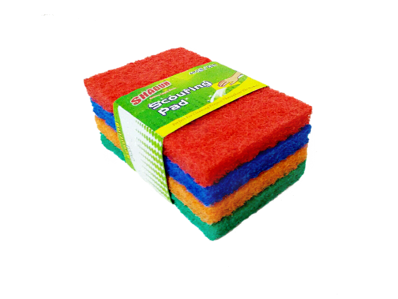 Scrub Pad Color 4Pc Set
